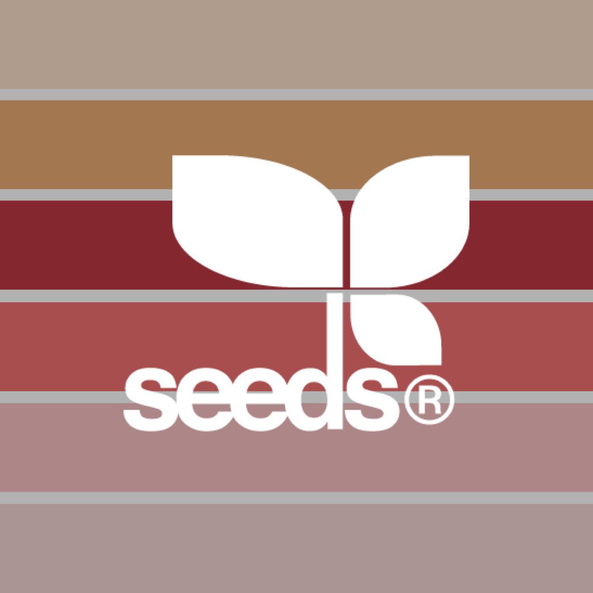 Design Seeds 02
