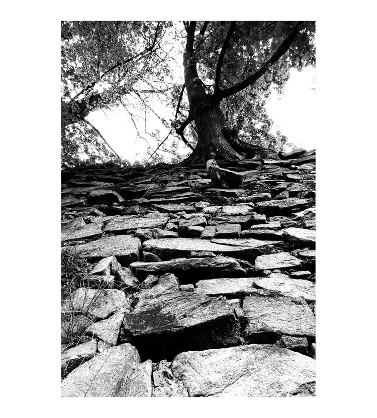 Climber - bw, bnw, blackandwhitephotography - brthelemy | ello