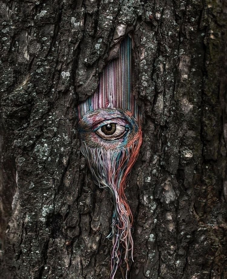 Nature watching time - cristo-baal | ello
