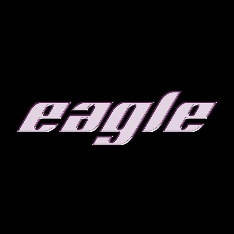 eagle eagle🦅 [ bird collection  - sebastiien | ello