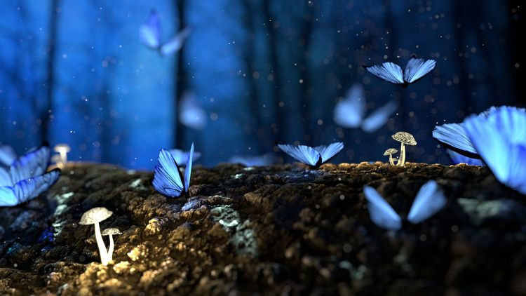 Butterflies Painting   Neil Hab - neilhaboush   ello