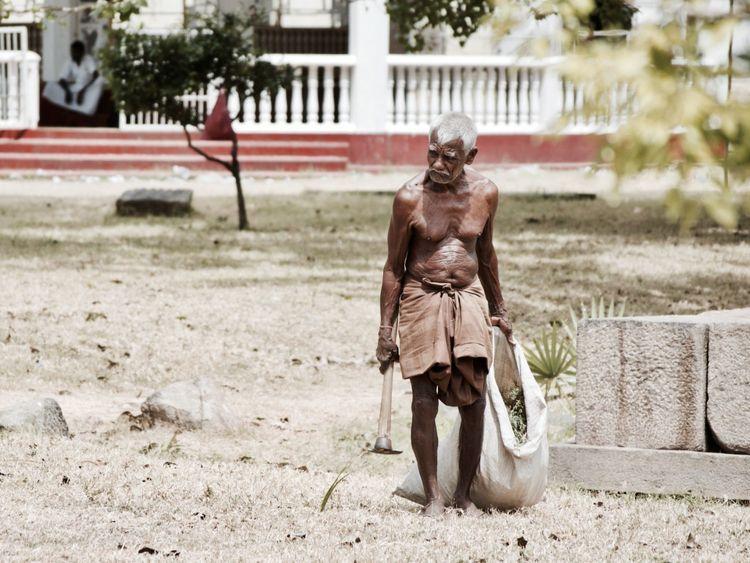 Man Working: Sri Lanka 2015 Nik - dainahodgson | ello