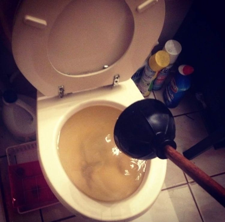 Toilet Work! toilet. day! work - f1plumber | ello