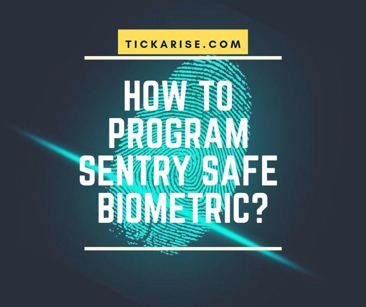 Program Sentry Safe Biometric 2 - tickarise | ello