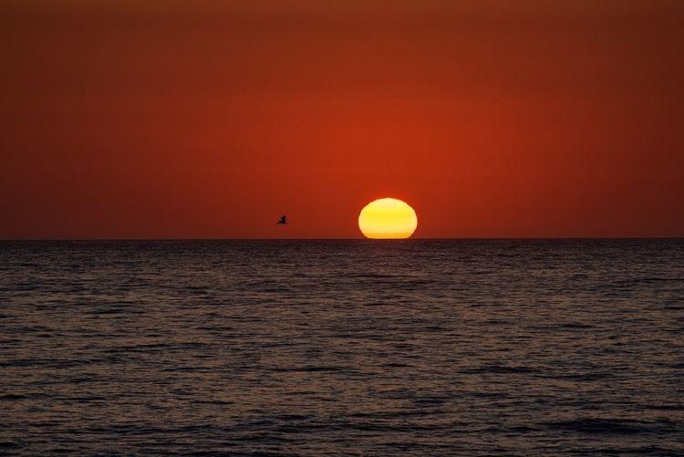 Summer Sunset California coast - jonkahn | ello