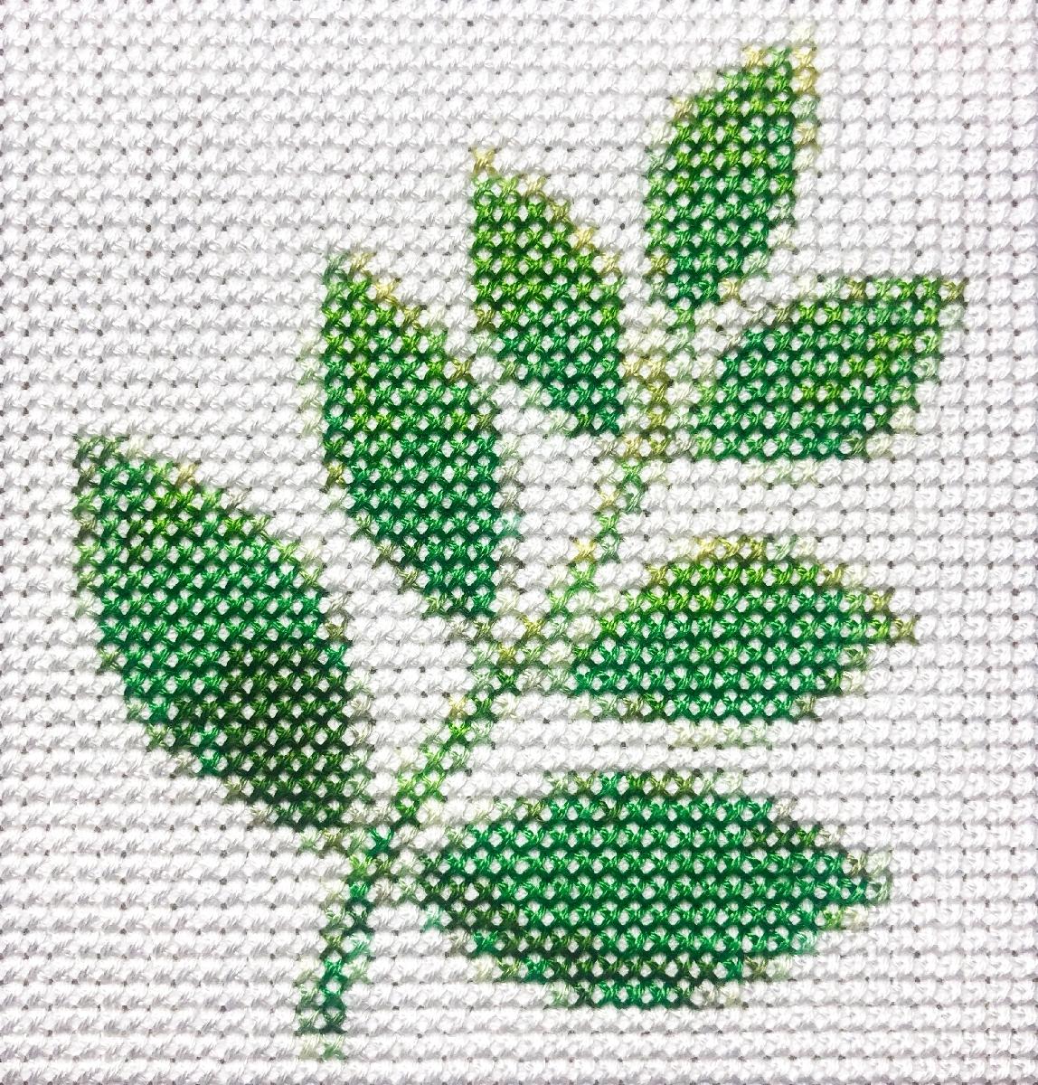 herb, 4.8 4 inches - aubrey   ello