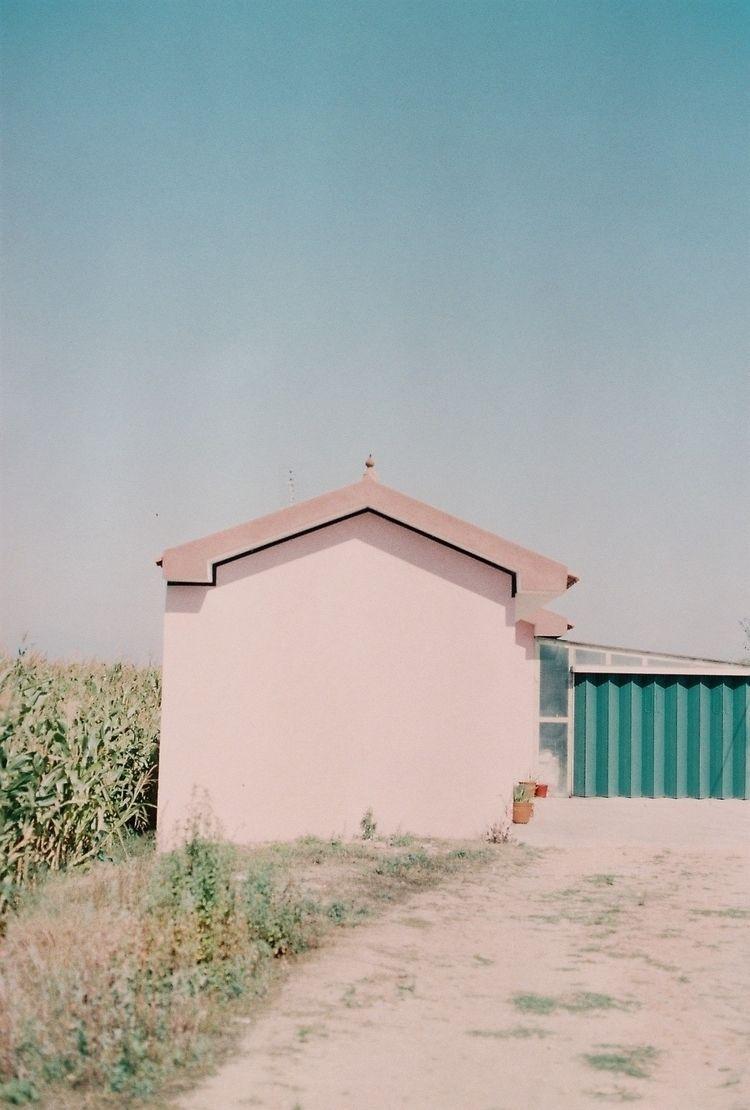 canon, photography, streetphotography - anatigre   ello