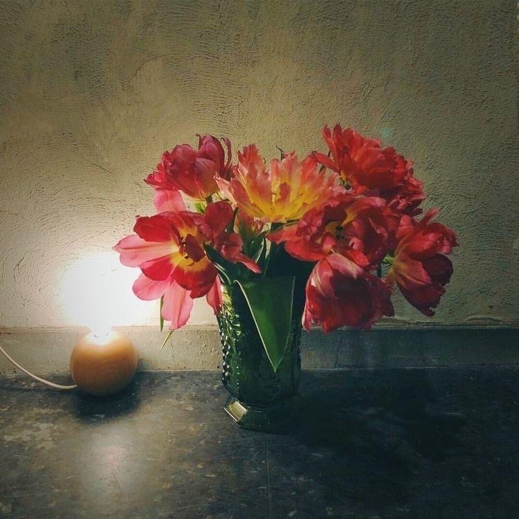 🥀:hibiscus::sparkles: Good even - mamimumemami | ello