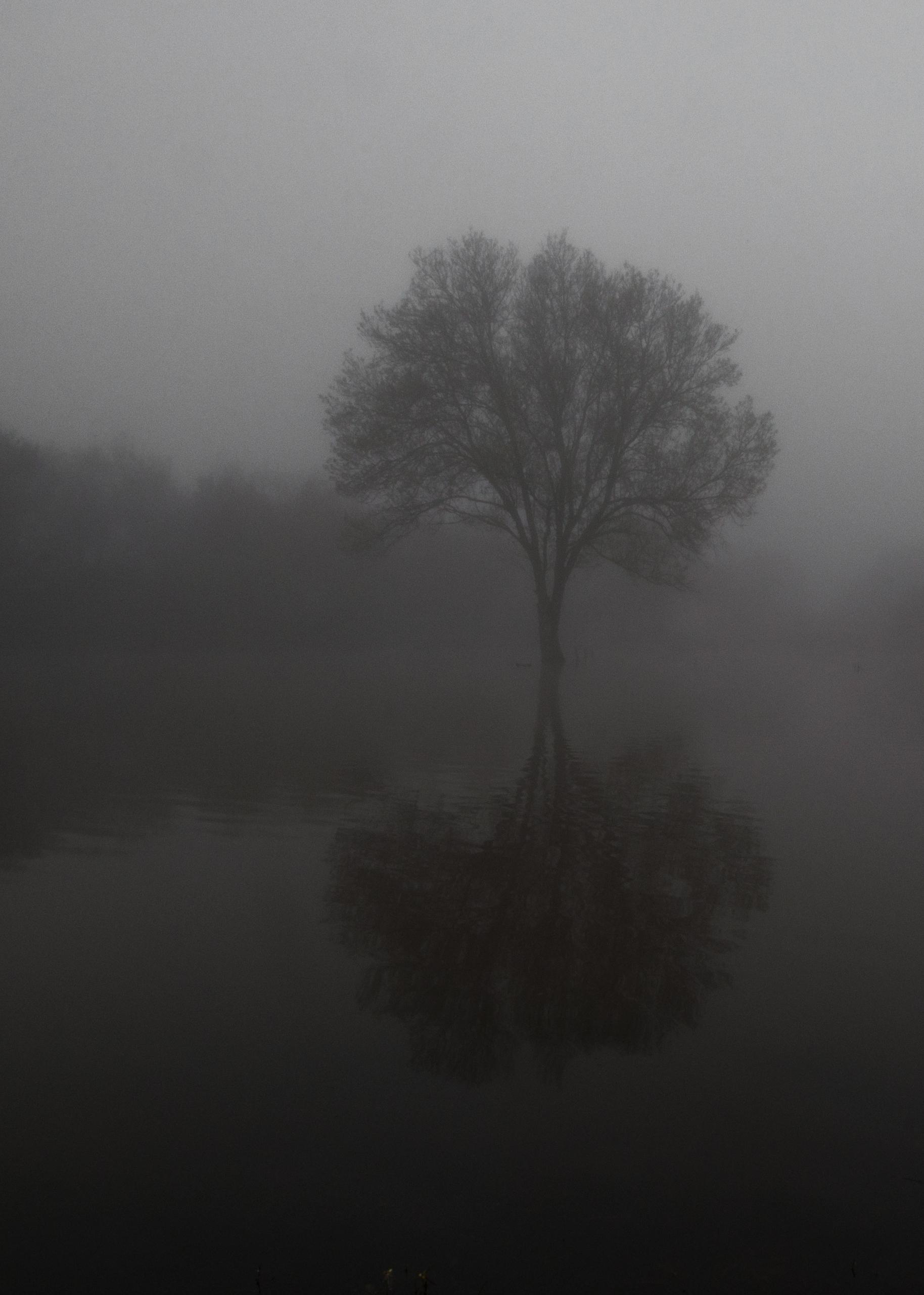 05:45 magical mystic landscapes - elloweirdo | ello