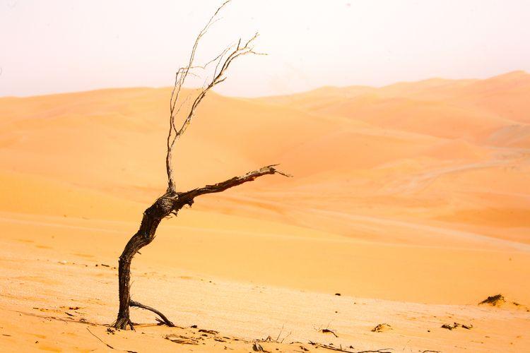 life tough - sadiqalqatari   ello