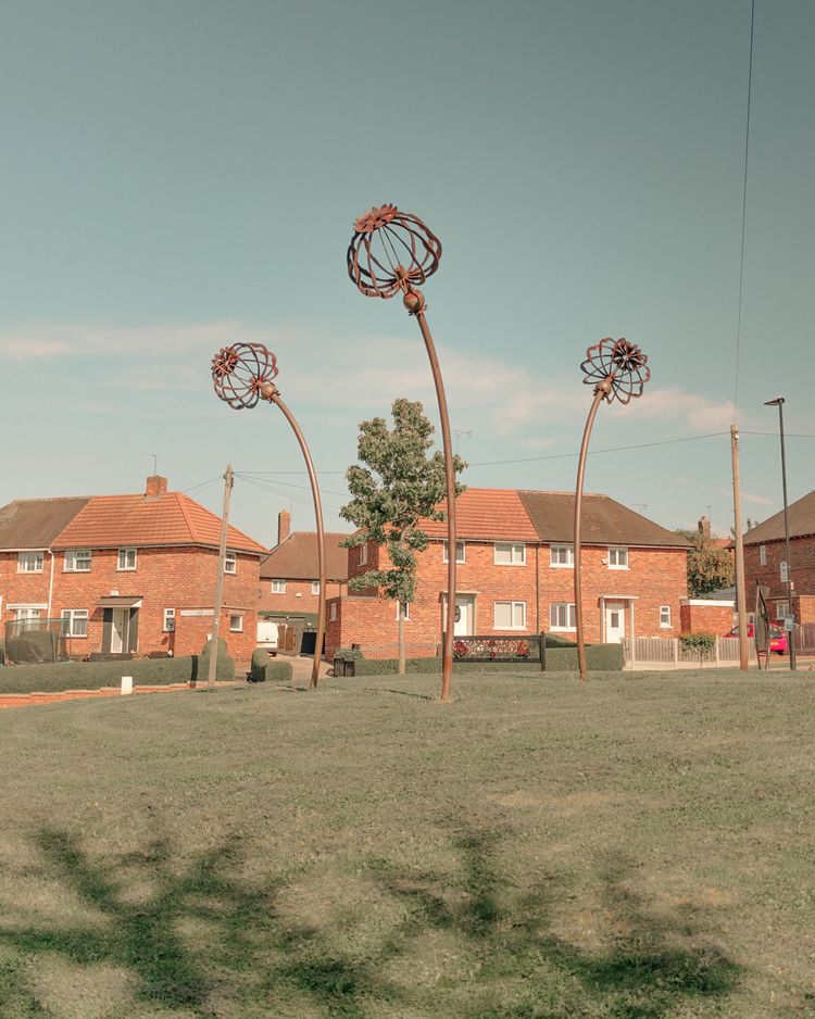 Poppy Fields, Sheffield, August - alinatrifan | ello