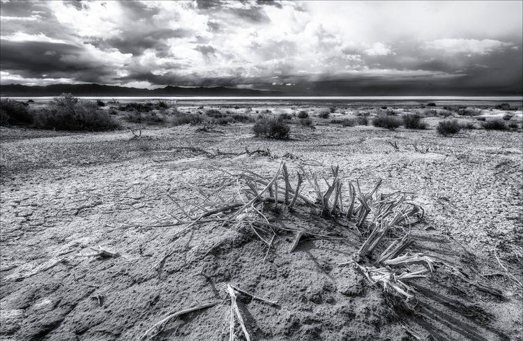 West Desert Utah Lake Sevier  - monochrome - docdenny | ello