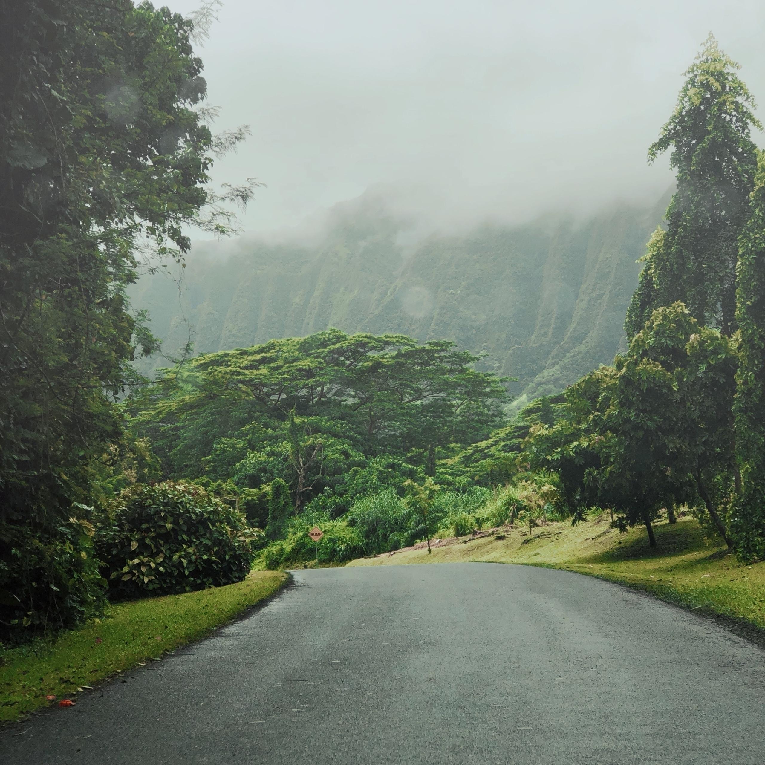 Lisa Kimberly - NewOnEllo, hawaii - lisakimberly   ello