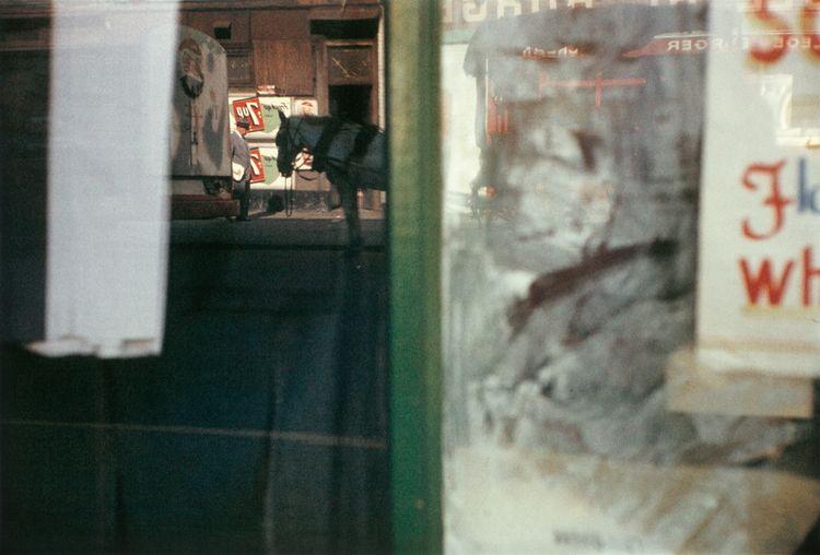 Saul Leiter – painterly photogr - bintphotobooks | ello