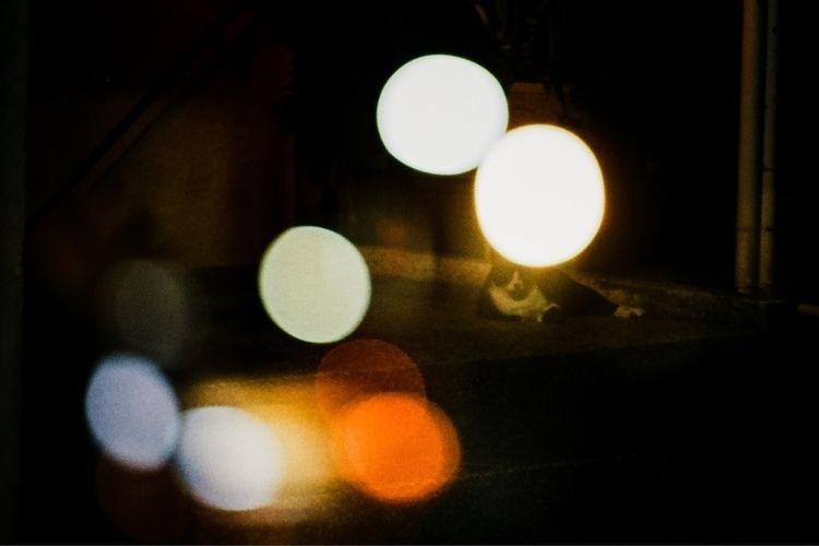 exposure - film, nikonfm, multiple - ucchen | ello