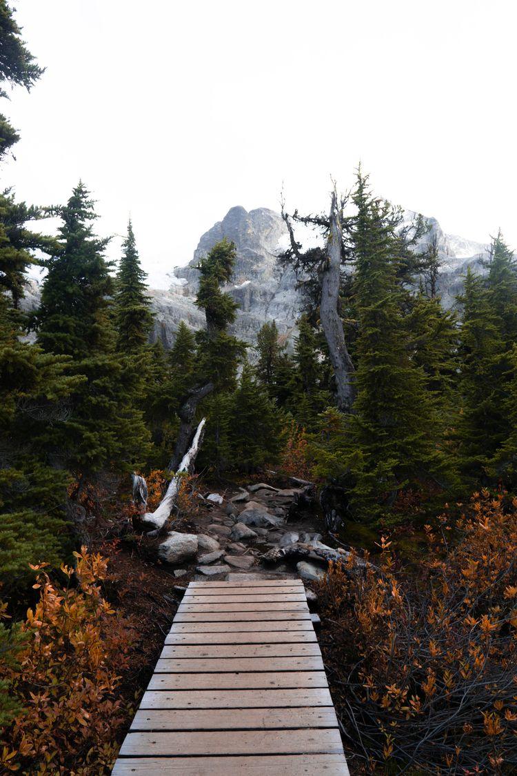 Autumn Strolls - kamaya_a   ello