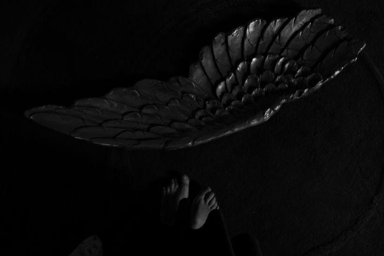 angel distress, 2019, Carla de  - carladesousa   ello