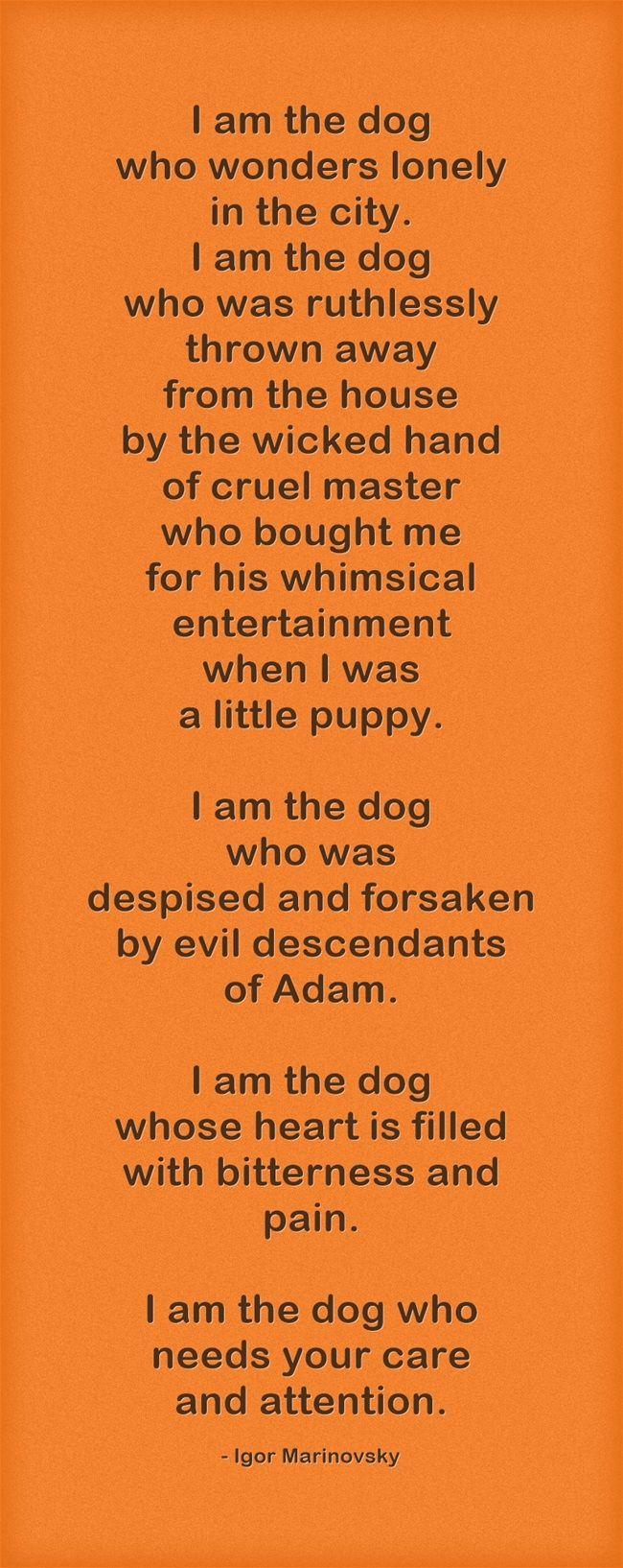 Poem homeless dog - poetry, poem - igormarinovsky | ello