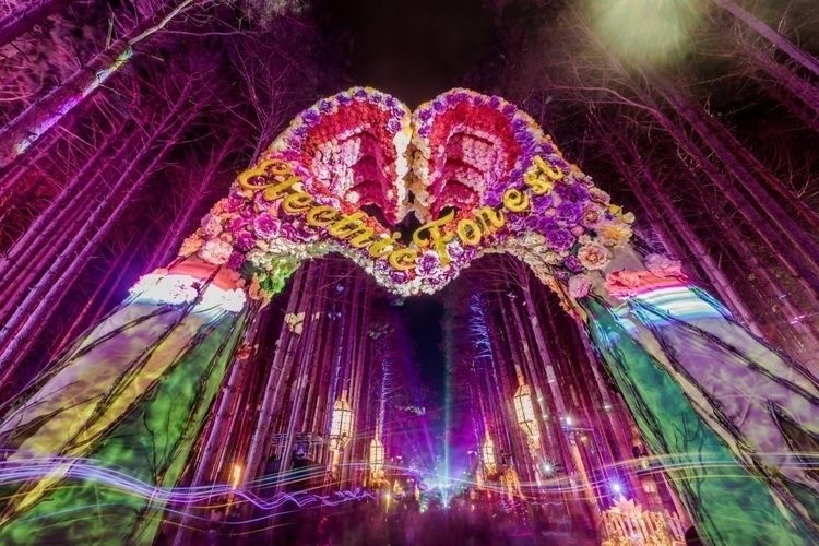 Electric Forest approved 6-day  - thissongissick | ello