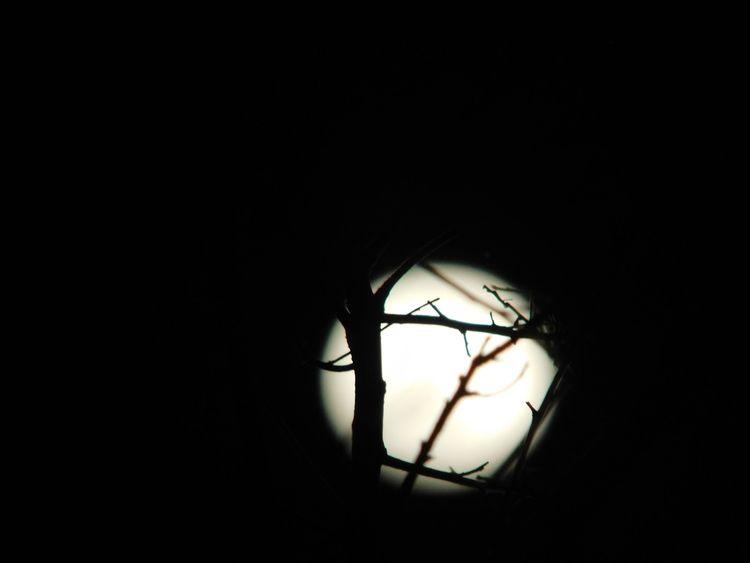 Túnel lunar - oscarggh | ello