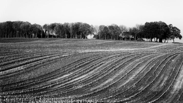 Groesbeek-Wyler area  - erik0111   ello