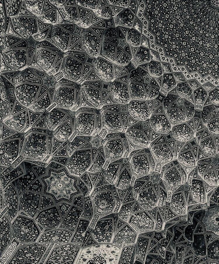 Divine Hive:honeybee - momiroh | ello