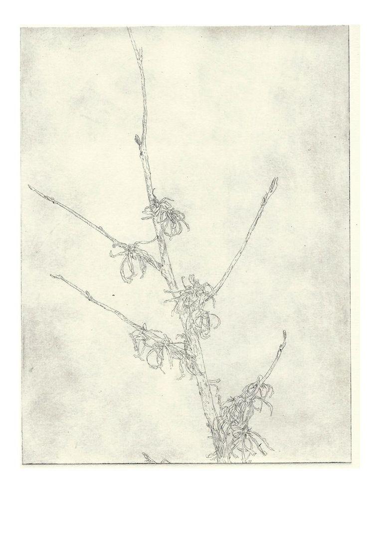 flower, illustration, lovedrawing - antoninguillot | ello