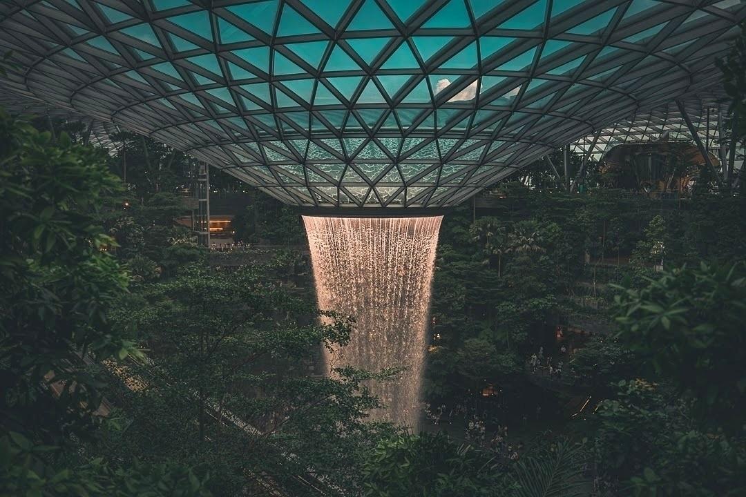 falling water, lot plants trees - fokality | ello
