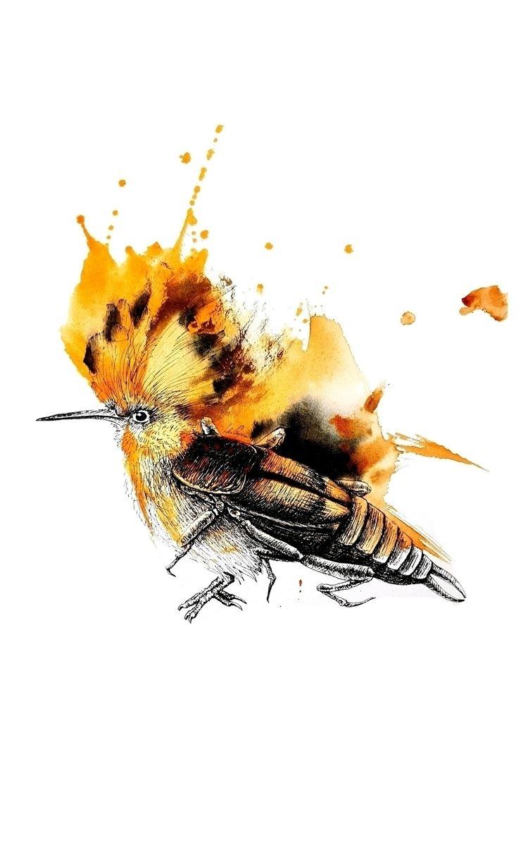 Bird eats symbiosis = hoopoe +  - leacmi | ello
