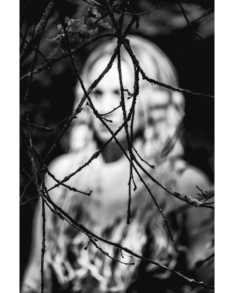 nature abstract, hidden plain s - dalemateoart | ello