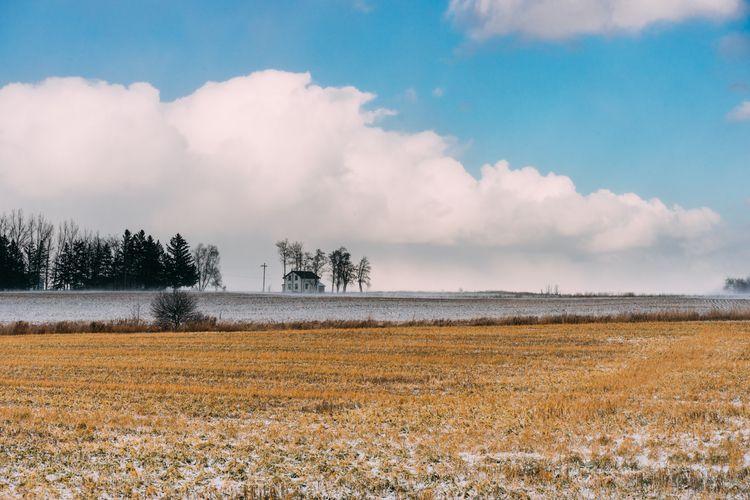 Snowy sides - nickstanley | ello