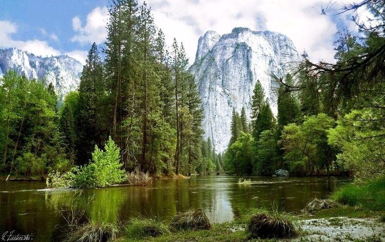 graceful serenity... Yosemite N - abstractcolorism | ello