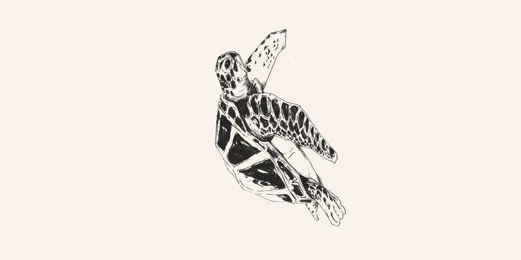 Turtle // Chinese Medicine - illustration - danielido | ello