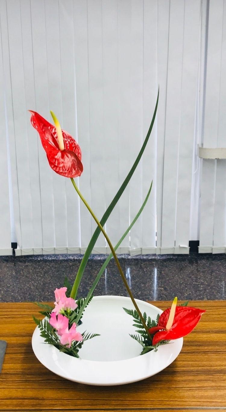 ikebana works - flower-ak | ello
