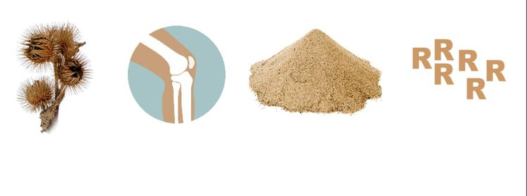 Burr Knee Sand - dcspensley | ello