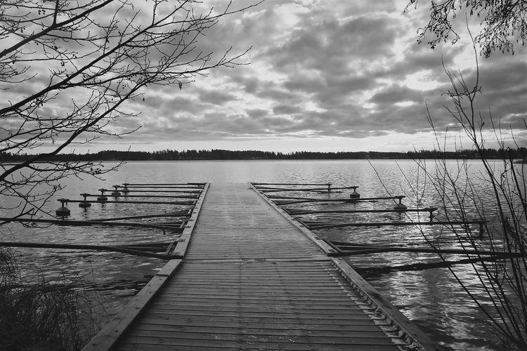 Morning broken bw - morning, lake - taari   ello