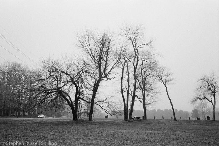 Mercer County Park, NJ - 2020  - sr-shilling | ello