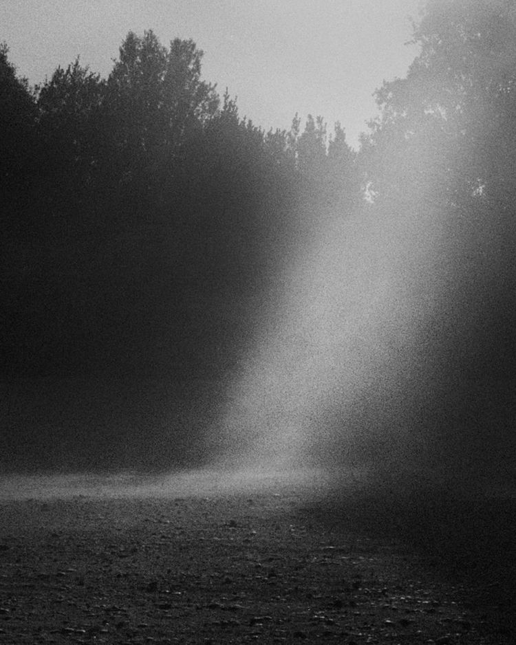 Noema Michael Swann - phasesmag | ello