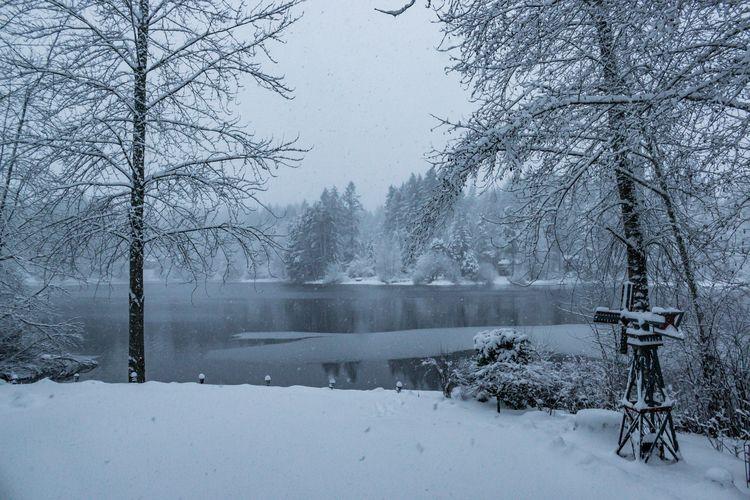 Snowy Lake View 07 Stansberry L - davidseibold | ello