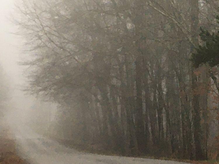 foggy road ! Michael Daugette - awedbydesign72 | ello