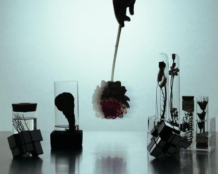 lab / Day 362 Photo Wei Ding - 365PhotoChallenge - weiding22 | ello