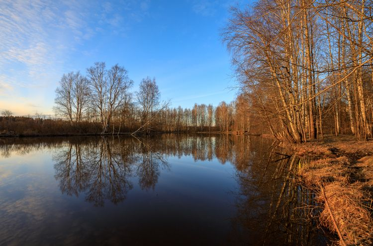 Spring eve - photography, landscape - anttitassberg | ello