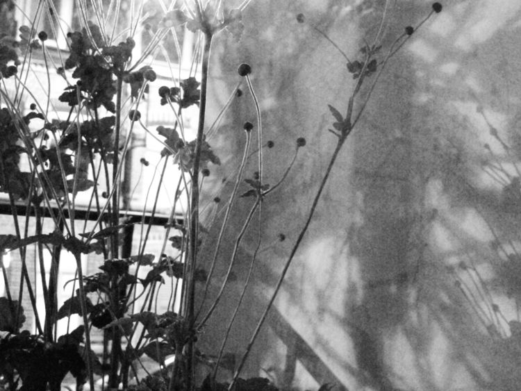 onthewall, poetry, infinity - karineduval | ello