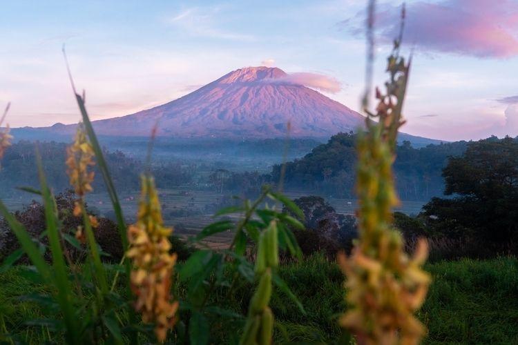 Mount Agung, Bali, Indonesia sn - dis_satisfied | ello