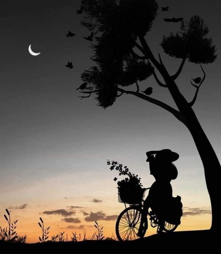 Boa Noite ! anoitecer ao amanhe - lolosbri | ello