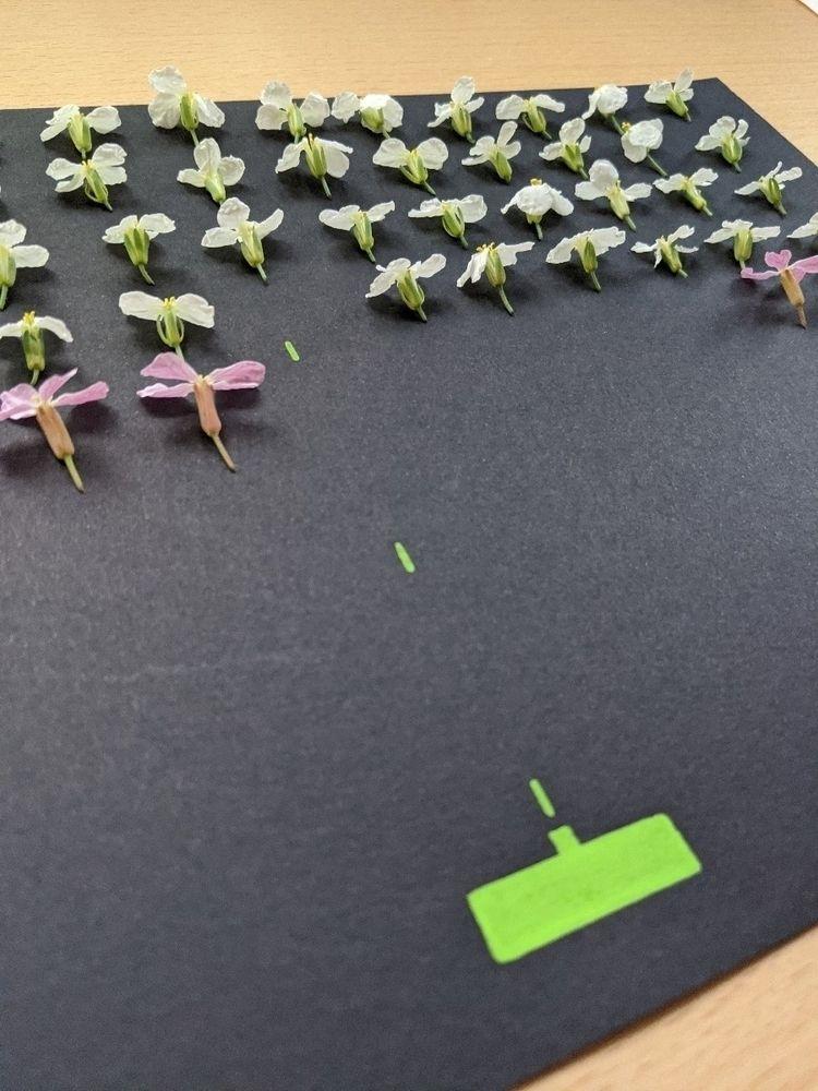 Eco Space Invaders. Radish flow - juanjogasp | ello