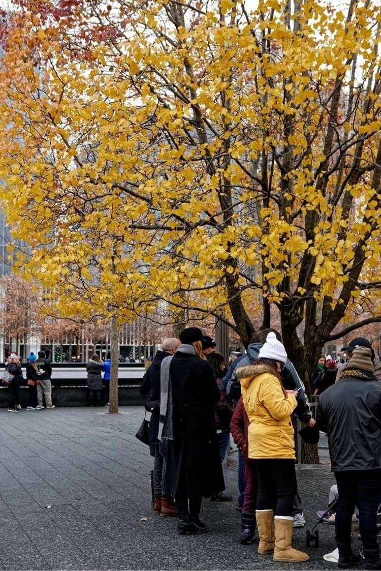 Serendipity: 911 Memorial, NYC - xiomaro | ello