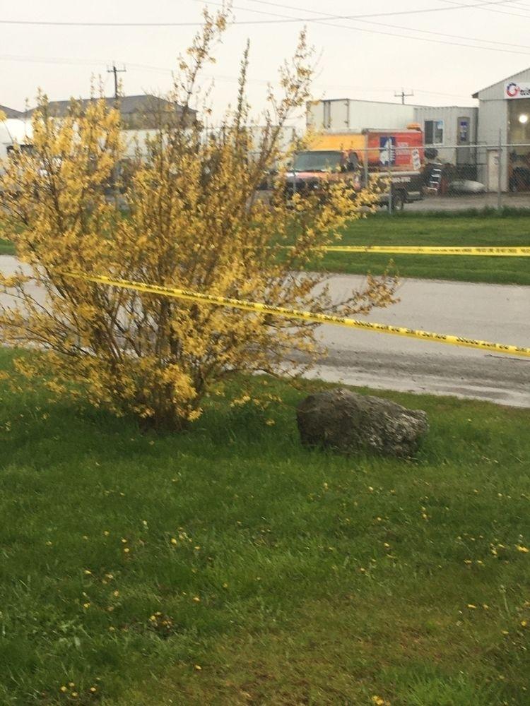 Gunfire front driveway today - alexandrakitty | ello