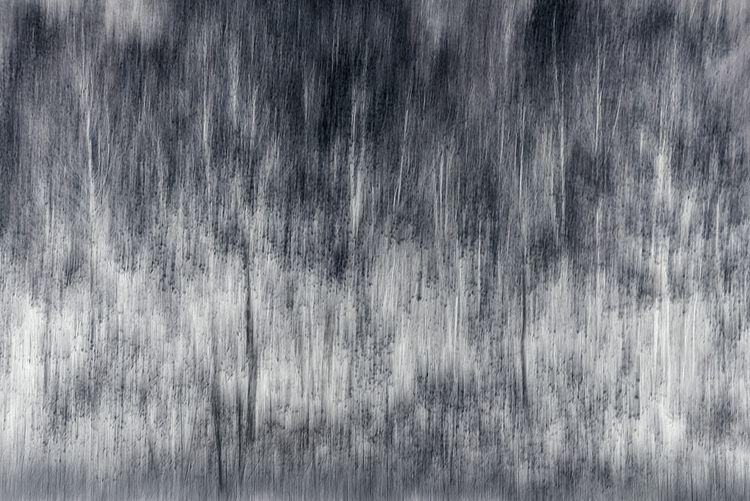 landscape dusk / seneca camera - voiceofsf | ello