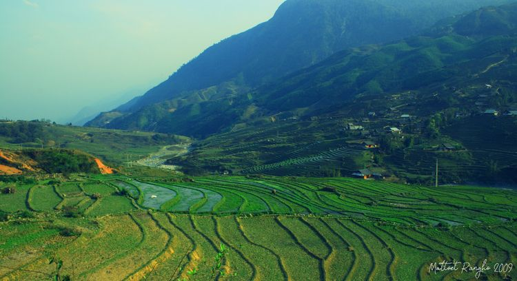 Sapa -Vietnam - ello, ellophotography - mattoet_rangho | ello